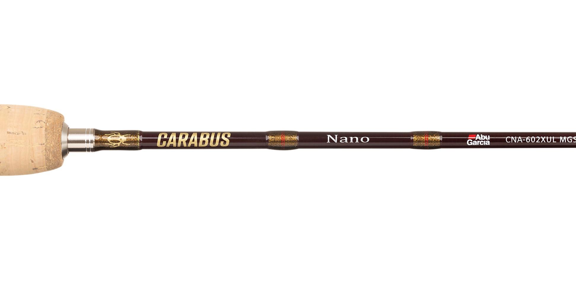 1. Carabus_Nano_2021_1525853_alt1.jpg