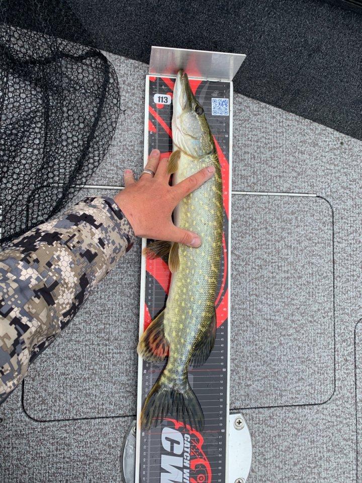 1_Tag 1 Erster Fisch.jpg