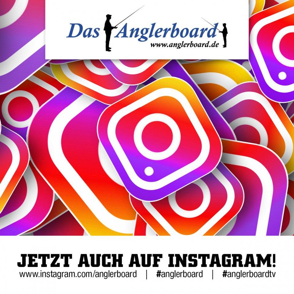 Anglerboard_facebook_jetzt auch auf Instagram.jpg
