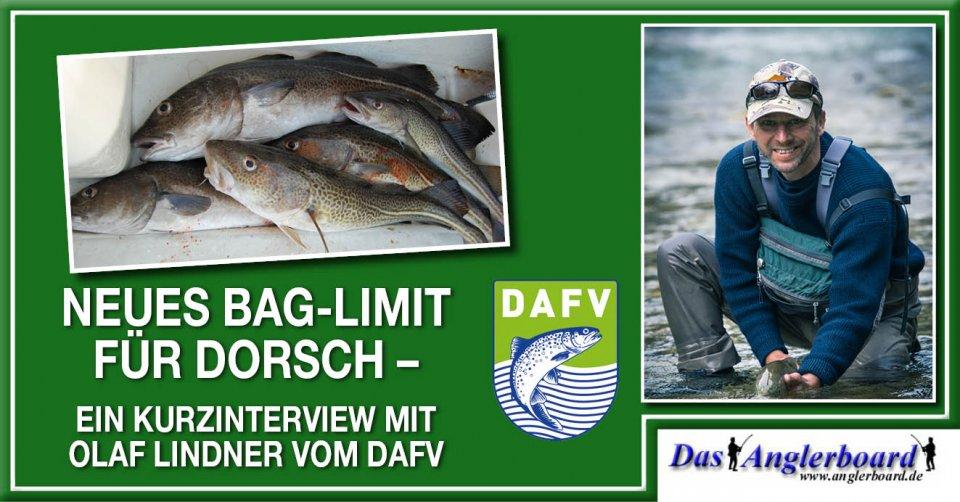 Beitragsbild-Anglerboard_635x332_Neues Bag-Limit für Dorsch.jpg