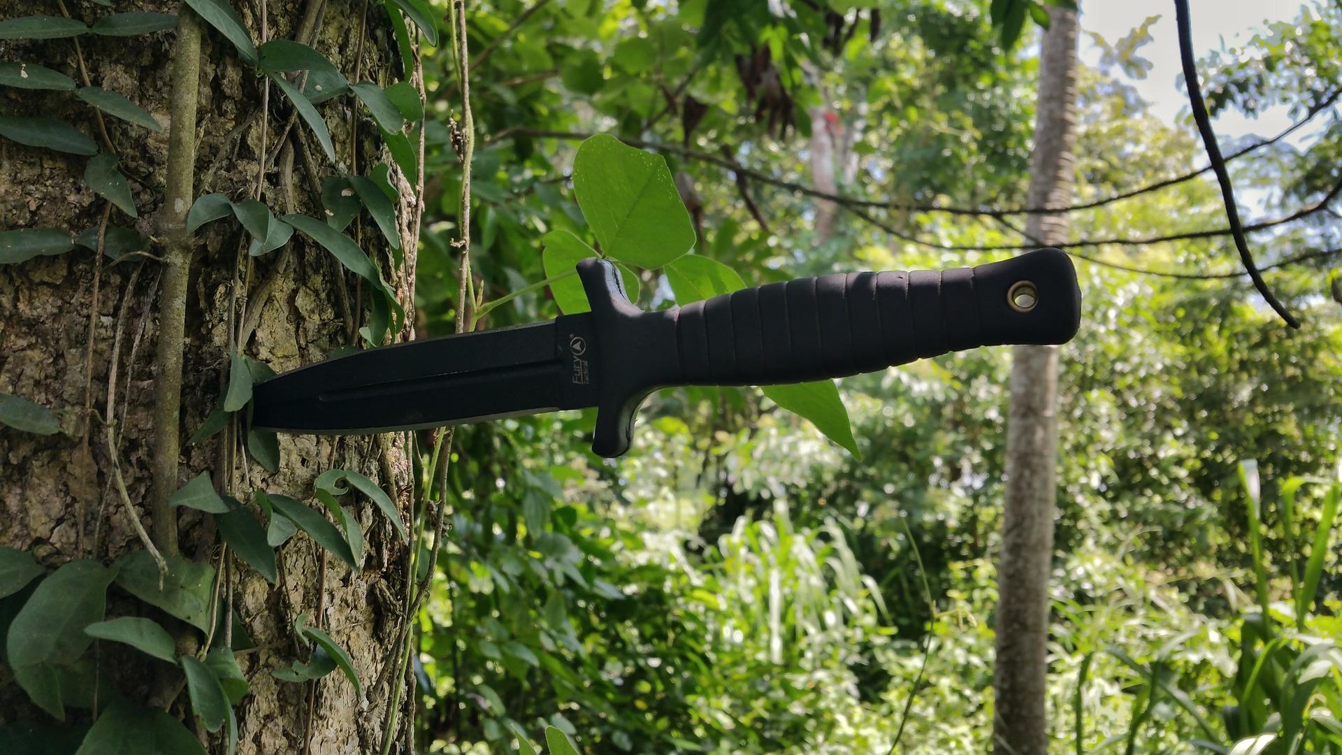 boot-knife-2715686_1920.jpg