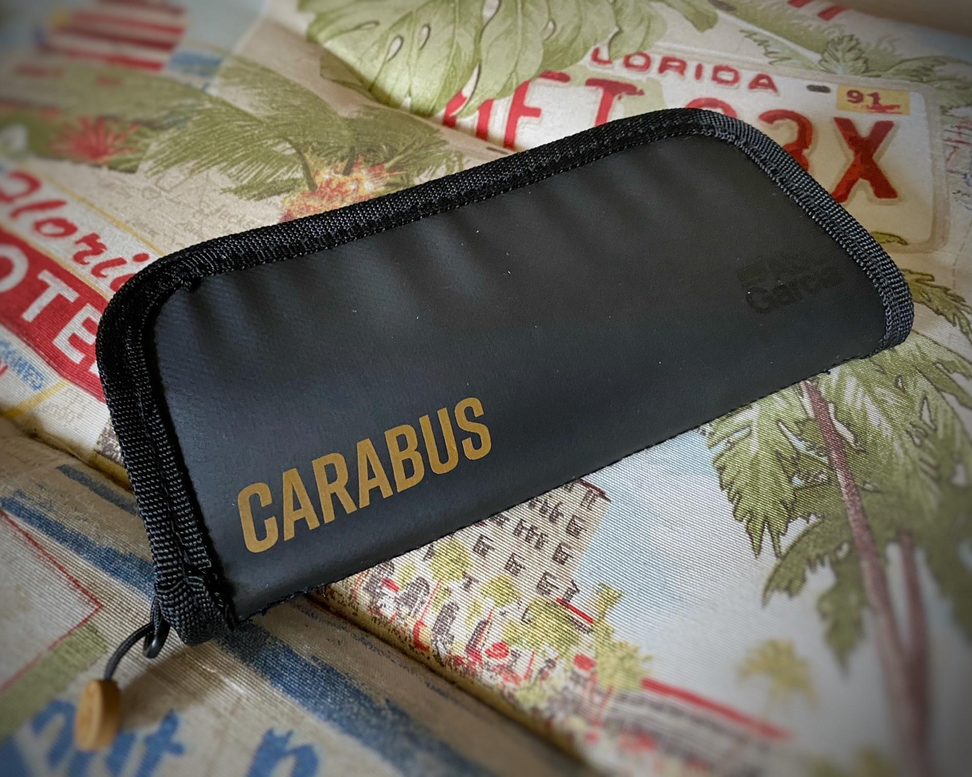 Carabus Tasche 3.jpg