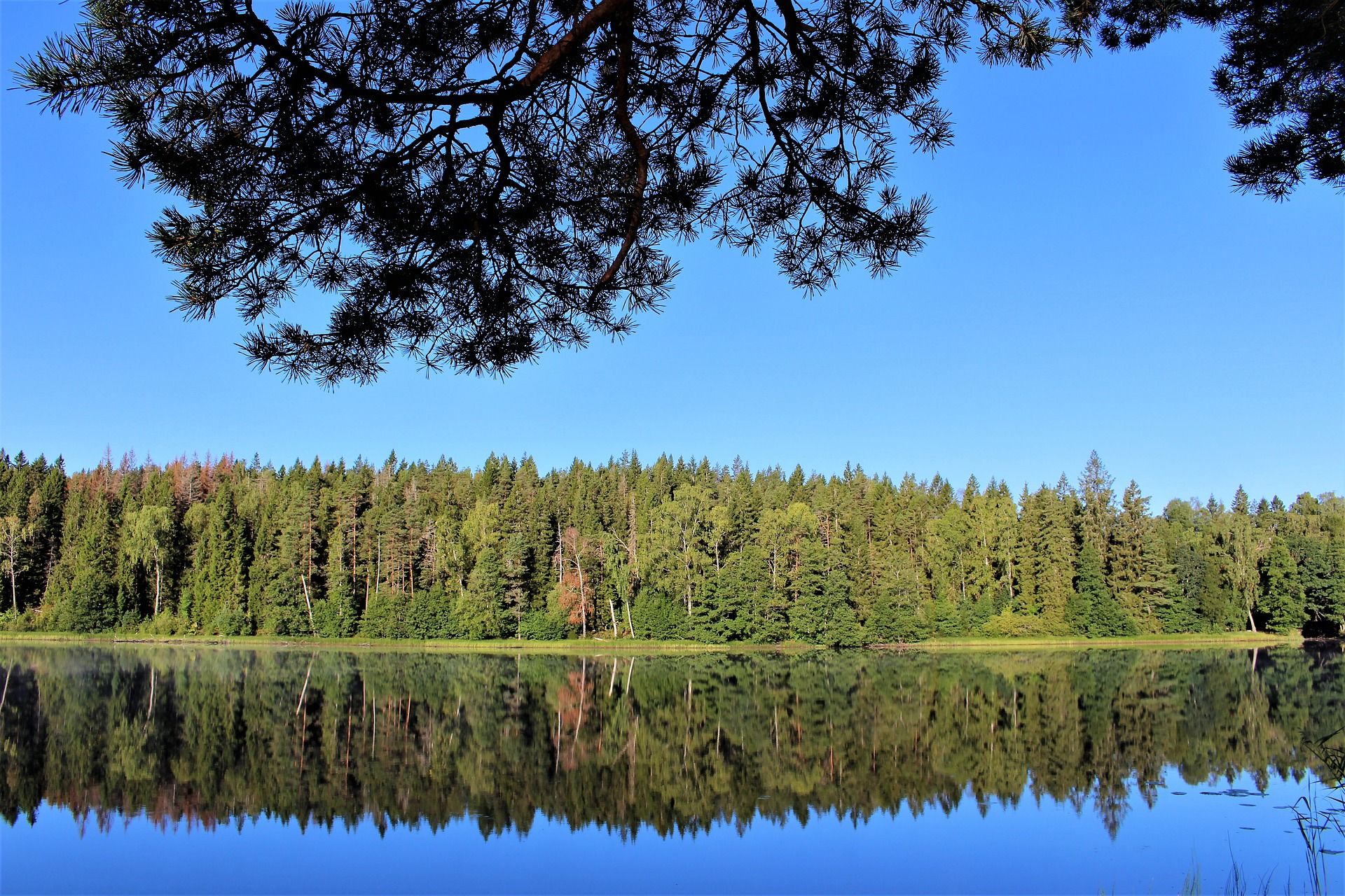lake-4732284_1920.jpg