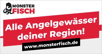 monsterfisch-banner-2.png