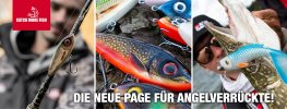 Catch more Fish_Banner-FB_820x312px_2.jpg