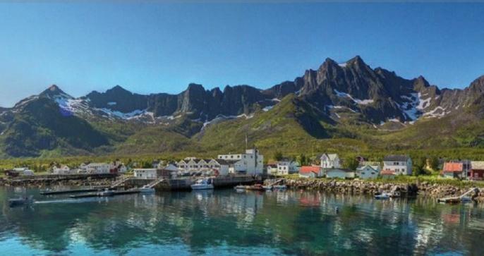 mefjord_brygge1.jpg